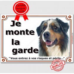 """Aussie Bleu Merle Tête, plaque """"Je Monte la Garde"""" 2 tailles LUX B"""