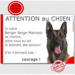 """Malinois tête, plaque """"Jetez Vous au Sol, Attention au Chien"""" 24 cm JET"""