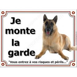 Berger Belge Malinois Couché, Plaque portail Je Monte la Garde, panneau affiche pancarte, risques périls attention au chien