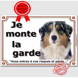 Berger Australien Bleu Merle Tête, Plaque Je Monte la Garde, panneau affiche, risques périls pancarte attention au chien