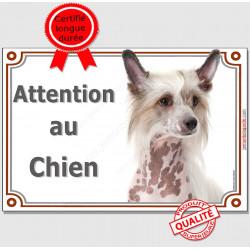"""Chien Chinois à Crête Tête, plaque """"Attention au Chien"""" 3 tailles LUXE A"""