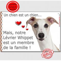 """Lévrier Whippet Tête, plaque Portail """"Attention, un chien est un membre de la famille"""" affiche panneau pancarte"""