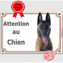 "Berger Belge Malinois Tête, plaque ""Attention au Chien"" pancarte panneau photo race"