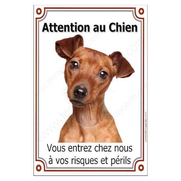 Pinscher Fauve Tête, Plaque Portail Attention au Chien verticale, risques périls, pancarte, affiche panneau orange marron
