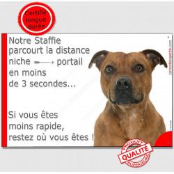 Plaque humour 24 cm Staffie fauve parcourt distance Niche - Portail moins 3 secondes, pancarte attention au chien staffy