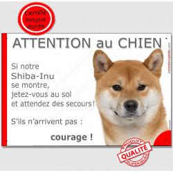 """Shiba Inu fauve, plaque portail humour """"Attention au Chien, Jetez Vous au So, couragel"""" pancarte panneau drôle photo"""