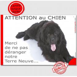 """Plaque """"Attention au Chien, Merci de ne pas déranger notre Terre Neuve"""" 24 cm NPD"""