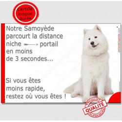 """Samoyède assis, plaque humour """"parcourt Distance Niche - Portail moins de 3 secondes"""" pancarte attention au chien photo"""