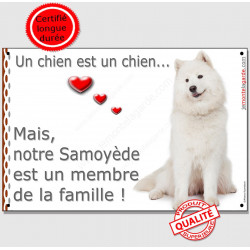 """Plaque Samoyède Assis Portail Attention """"un chien est un Membre de la Famille"""" affiche panneau entier photo"""