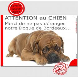 """Plaque """"Attention au Chien, Merci de ne pas déranger notre Dogue de Bordeaux"""" 24 cm NPD"""