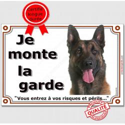 """Berger Belge Malinois Tête, plaque portail """"Je Monte la Garde, risques et périls"""" pancarte panneau sombre foncé photo"""