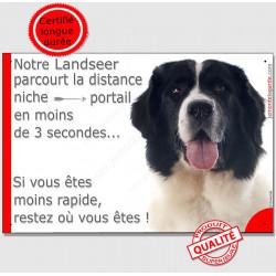 """Landseer Tête, plaque """"distance Niche - Portail"""" 24 cm 3SEC"""