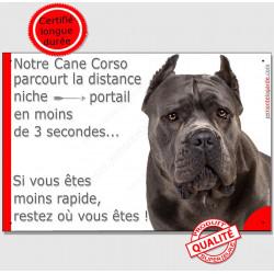 """Cane Corso gris, pancarte humour """"parcourt distance niche portail en 3 secondes"""" panneau drôle photo oreilles coupées"""