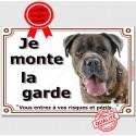 """Cane Corso bringé Tête, plaque """"Je Monte la Garde"""" 2 tailles LUX B"""