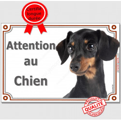 """Teckel Poils Ras Noir et Feu, Plaque portail """"Attention au Chien"""" panneau affiche pancarte photo"""