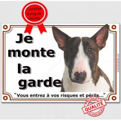 """Bull Terrier Bringé Tête, plaque portail """"je Monte la Garde, risques et périls"""" pancarte panneau bringué affiche photo"""