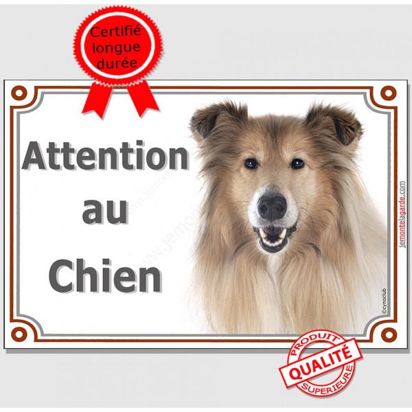 """Colley fauve Tête, Plaque portail """"Attention au Chien"""", panneau affiche pancarte de rue photo"""