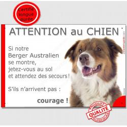 Berger Australien Tricolore Rouge Tête, Panneau Attention au Chien marrant drôle, affiche plaque, jetez-vous au sol et attendez