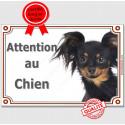 """Russkiy Toy Tête, plaque portail """"Attention au Chien"""" 2 tailles LUX A"""