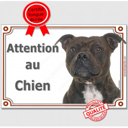 "Plaque portail  ""Attention au Chien"" Staffie bringé Tête pancarte panneau Staffy affiche photo race bringué"
