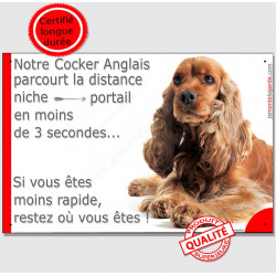 """Cocker Golden roux spaniel couché, plaque humour """"Distance Niche - Portail en moins de 3 secondes"""" pancarte panneau drôle photo"""