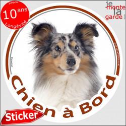 """Sticker autocollant rond """"Chien à Bord"""" 15 cm, Berger Shetland bleu merle Tête, adhésif vitre voiture photo"""