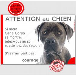 """Cane Corso gris bleu tête, plaque humour """"Attention au Chien, Jetez Vous au Sol"""" pancarte panneau drôle photo"""