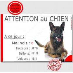"""Malinois, plaque """"Nombre de Voleurs, ballons, facteurs, Attention au Chien"""" 24 cm NBR"""