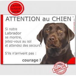 Labrador Chocolat Tête, Panneau Attention au Chien marrant drôle, affiche plaque drôle marron brun, jetez-vous au sol et attende