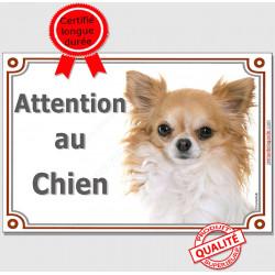 """Plaque portail """"Attention au Chien"""" Chihuahua fauve et blanc à poils longs Tête pancarte panneau crème beige photo"""