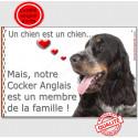 """Cocker Anglais, plaque """"Membre de la Famille"""" 24 cm LOVE"""