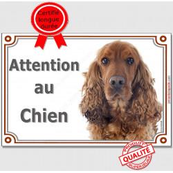 """Cocker Anglais Golden Tête, plaque portail """"Attention au Chien"""" pancarte panneau spaniel roux, photo"""