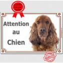 """Cocker Golden Tête, plaque """"Attention au Chien"""" 2 tailles LUX B"""