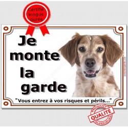 """Epagneul Breton blanc et orange Tête, plaque portail """"Je Monte la Garde, risques et périls"""" panneau pancarte attention au chien"""