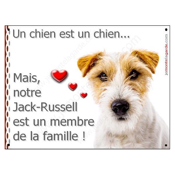 Jack Russell poils durs Tête, Plaque Portail un chien est un chien, membre de la famille, pancarte, affiche panneau