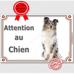"""Shetland Merle Assis, Plaque portail """"Attention au Chien"""" panneau affiche pancarte photo"""