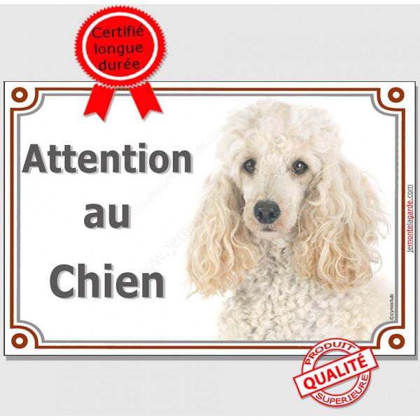 """Caniche Blanc Tête, Plaque portail """"Attention au chien"""" panneau affiche pancarte photo"""