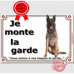 """Berger Belge Malinois assis, plaque portail """"Je Monte la Garde, risques et périls"""" pancarte panneau sombre foncé photo"""