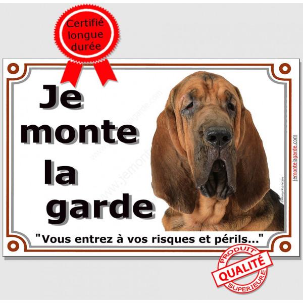 """Saint-Hubert tête, plaque portail """"Je Monte la Garde, risques et périls"""" pancarte attention au chien panneau photo"""