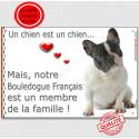 """Bouledogue Français Caille, plaque int/ext. """"Membre de la Famille"""" 2 Tailles LOV A"""