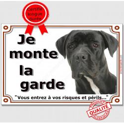 Cane Corso, Plaque portail je Monte la Garde, Affiche, pancarte, panneau pancarte, risques périls attention au chien photo