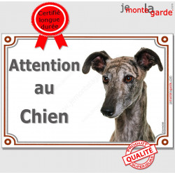"""Lévrier Galgo Espagnol Tête, plaque portail """"Attention au Chien"""" pancarte panneau affiche photo"""