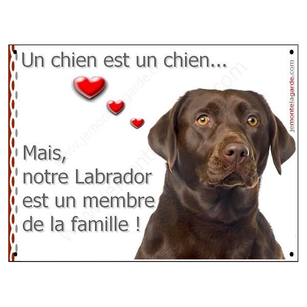 Labrador Chocolat Tête, Plaque Portail un chien est un chien, membre de la famille, pancarte, affiche panneau