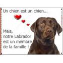 """Labrador Chocolat Tête, plaque """"Membre de la Famille"""" 24 cm LOVE"""