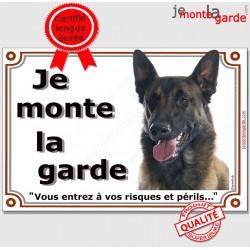 """Berger Belge Malinois Tête, plaque portail """"Je Monte la Garde, risques et périls"""" pancarte panneau foncé sombre attention photo"""