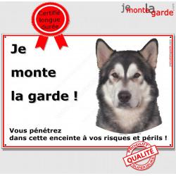 Alaskan Malamut, pancarte portail je monte la garde, plaque affiche panneau, risques et périls attention au chien