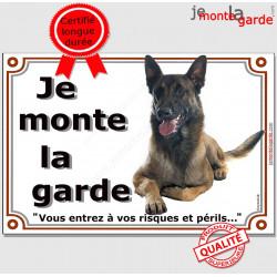 """Berger Belge Malinois couché, plaque portail """"Je Monte la Garde, risques et périls"""" panneau pancarte attention au chien photo"""