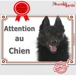 """Schipperke Tête, Plaque portail """"Attention au Chien"""" panneau affiche pancarte photo"""