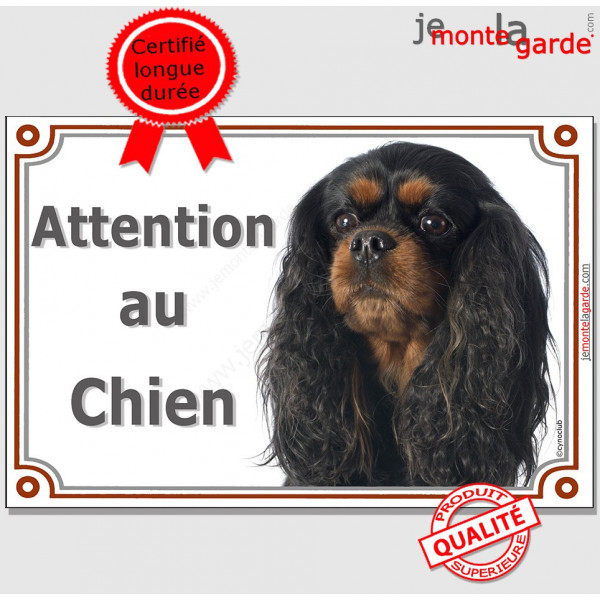 """Cavalier King Charles noir et feu, plaque portail """"Attention au Chien"""" pancarte panneau photo affiche"""