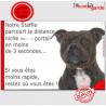 """Staffie bringé Tête, plaque """"distance Niche - Portail"""" 24 cm"""